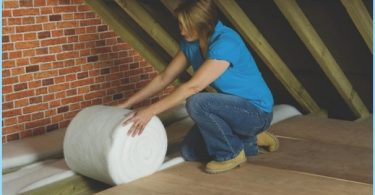 Choosing insulation for walls and roofs