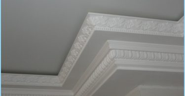 Forms ceiling plinths