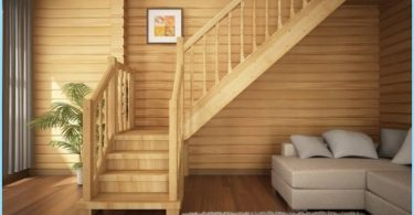 Stairs for cottages and private homes with photos